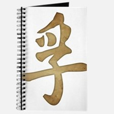 Kanji - Truth Journal