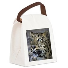 Jett 3B Canvas Lunch Bag