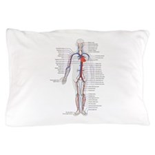 Circulatory System Pillow Case