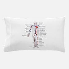 Circulatory System Pillow Case