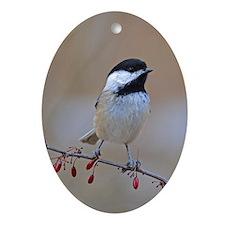 Chickadee On Limb 2 Ornament (Oval)