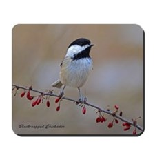 Chickadee On Limb 2 Mousepad