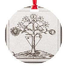 Alchemy Hermeticism Tree Ladder of  Ornament