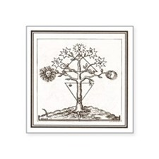 "Alchemy Hermeticism Tree La Square Sticker 3"" x 3"""