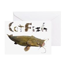 Catfish side font Greeting Card