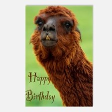 funny alpaca birthday Postcards (Package of 8)