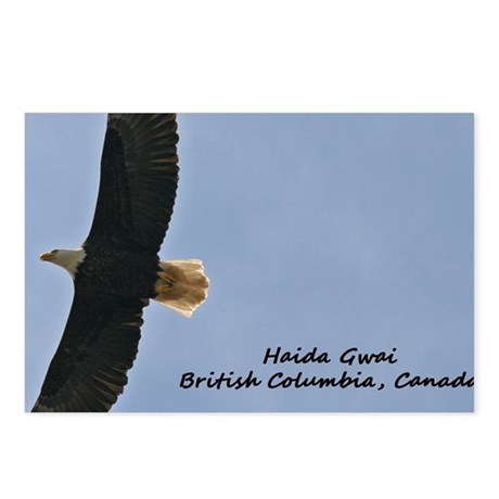 Haida Gwaii Eagle Postcards (Package of 8)