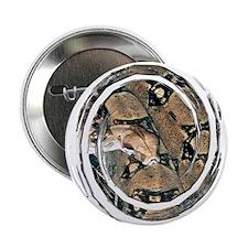 Boa Constrictor Button