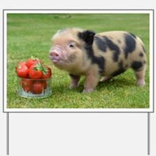 Micro pig with strawberries Yard Sign