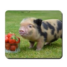 Micro pig with strawberries Mousepad