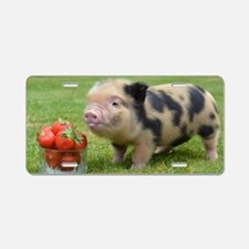 Micro pig with strawberries Aluminum License Plate