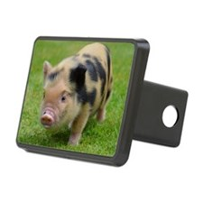 Little Spotty micro pig Hitch Cover
