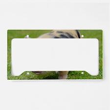 Little Spotty micro pig License Plate Holder