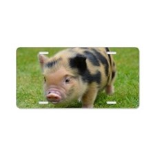 Little Spotty micro pig Aluminum License Plate