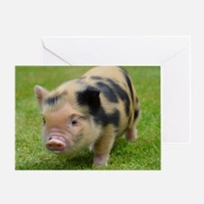 Little Spotty micro pig Greeting Card