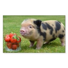 Little micro pig with strawber Decal