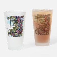 Floral Skylight - Fenway Gate Drinking Glass