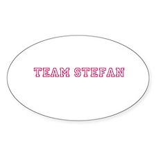 Team Stefan Decal