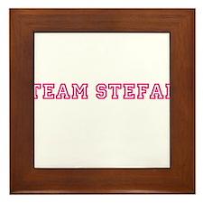 Team Stefan Framed Tile