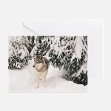 """The  Greywolf"" Greeting Card"