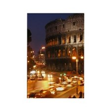 Rome_2.1675x4.717_iPhone5SwitchCa Rectangle Magnet
