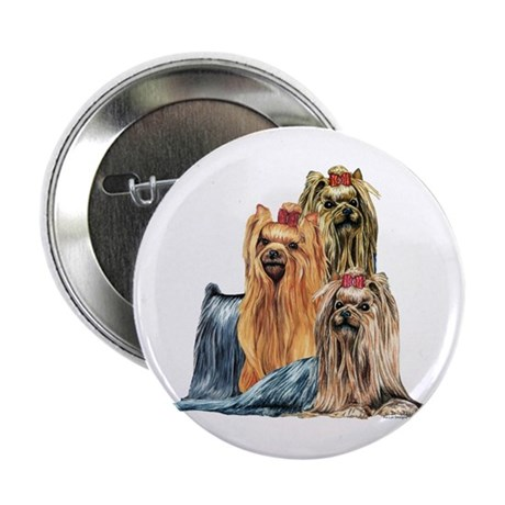 "Yorkshire Terrier Yorkie Collage 2.25"" Button (100"