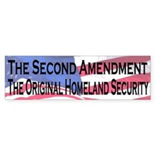 The Second Amendment, Original Homeland Security
