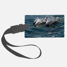 Dolphins at Play Luggage Tag