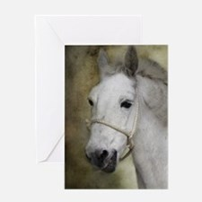 White Mule Greeting Card