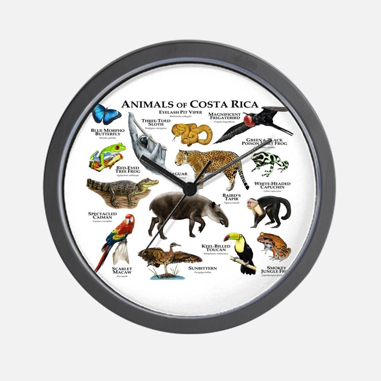 Costa Rica Animals Wall Clock