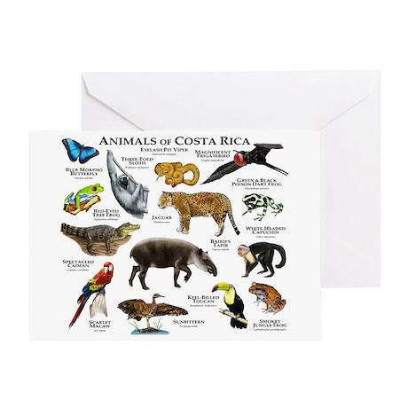 Costa Rica Animals Greeting Card