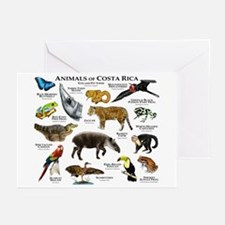 Costa Rica Animals Greeting Cards (Pk of 20)