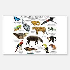 Costa Rica Animals Decal