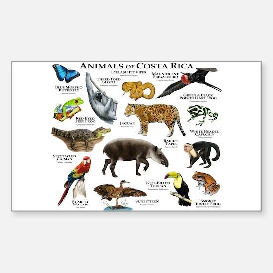 Costa Rica Animals Sticker (Rectangle)