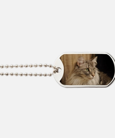Norwegian Forest Cat Dog Tags
