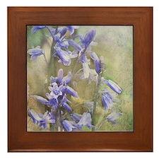 Bluebells Framed Tile