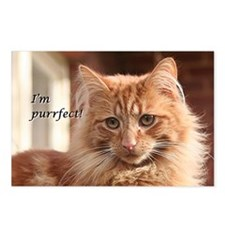 Cat - I'm purrfect! Postcards (Package of 8)