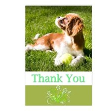 Thank You With Cavalier P Postcards (Package of 8)