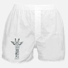 Harvey the Giraffe Boxer Shorts