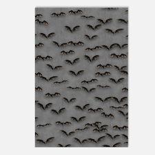 Bats on Gray Flip Flops Postcards (Package of 8)