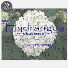Cover - Hydrangea Puzzle