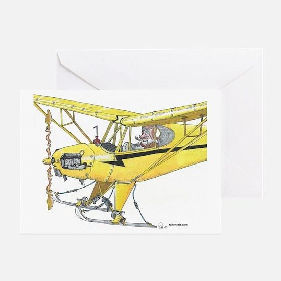 Cool Cub Ski Plane Greeting Card