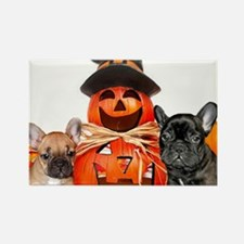 Halloween French Bulldogs Rectangle Magnet