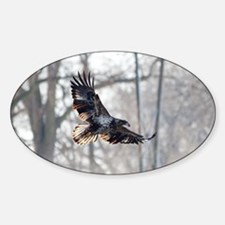 Eagle rock river Decal