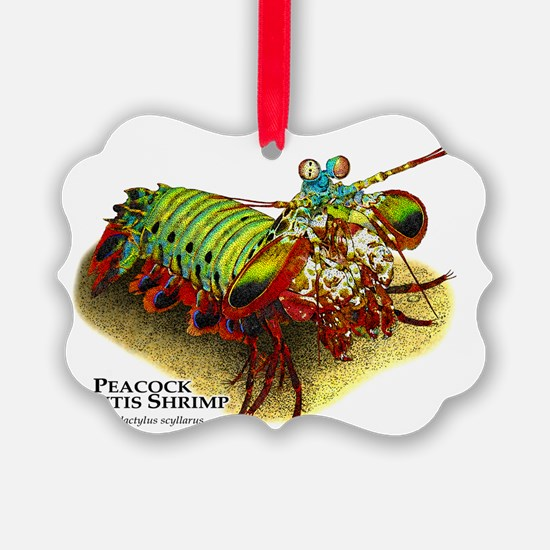 Peacock Mantis Shrimp Ornament