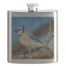 Bluejay 2 Flask