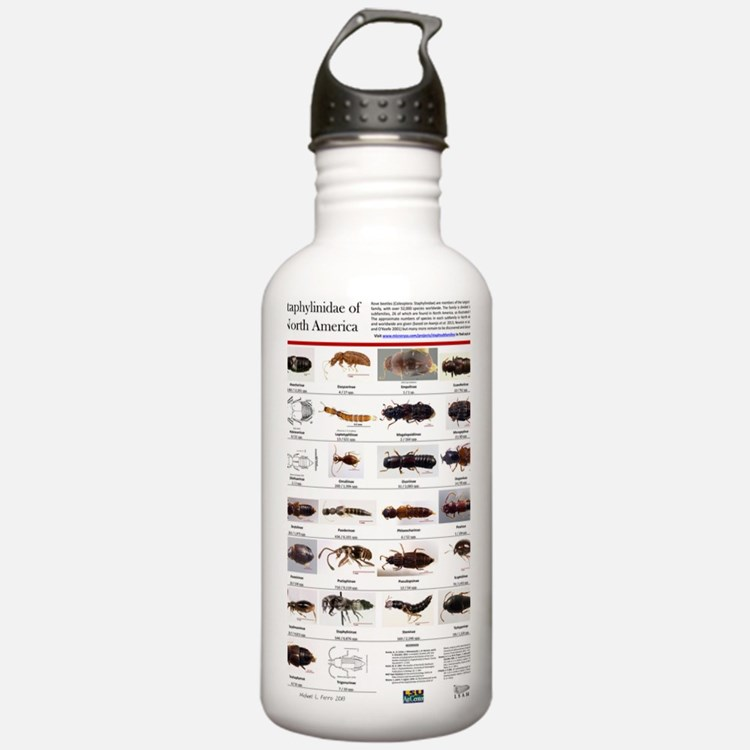 Staphylinidae Poster Water Bottle