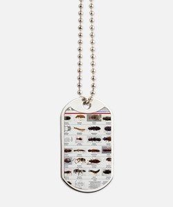 Staphylinidae Poster Dog Tags