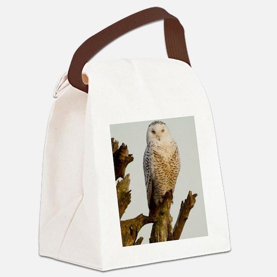 Snow Owl Canvas Lunch Bag