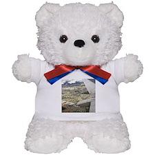 Taking Flight Teddy Bear